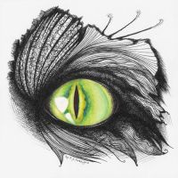 Eye of... cat? by antares-kerrigan