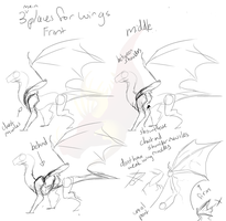 Sketchy Dragon Wing Placement Tutorial by PteraDragon