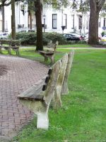 Park Benches : 01 by taeliac-stock
