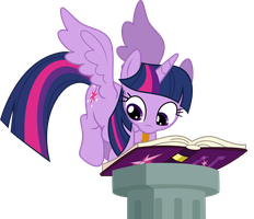 Books for the book horse by TheShadowStone