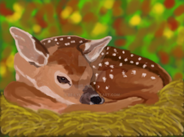 Fawn in a fall thicket by Be-Lyle