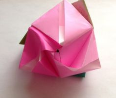 Rose Cube by Miriune