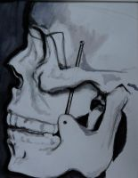 Skull and Bones. by fearsmeltaway