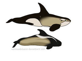 Wraith Whale and Cappuccino Orca for Gypsyskye by WeisseEdelweiss