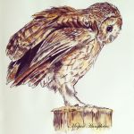 Tawny Owl painting by stardust12345