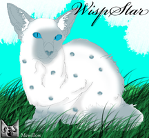 Wispstar by MEWillow