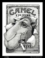 Camel Filters by S-Wan