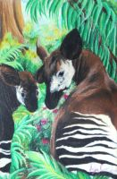 Okapi Mother and Calf by Faeyne-Silvercloud