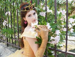 Belle (Golden Dress) / Beauty and the Beast by YukiChanRevolution