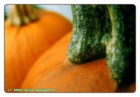 Hallowe'en I by chrisbouchard