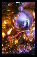 Bauble by neilcreek