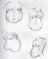 Fat Belly Studies by jEROMEaNIMATIONS
