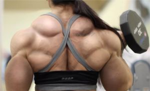 Female Back Morph by LauraJoKover