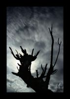 dark tree by Sonik-Sheep