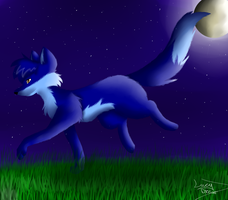 Walking in the moonlight by LucyDraw