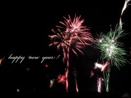 happy new year by Paul774