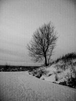 lost and forgotten by VinceLoftsson