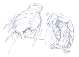 GiantIsopods-CharacterSketches by Lizkay