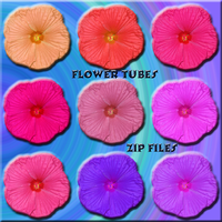 Flower Tube Pack by WDWParksGal-Stock