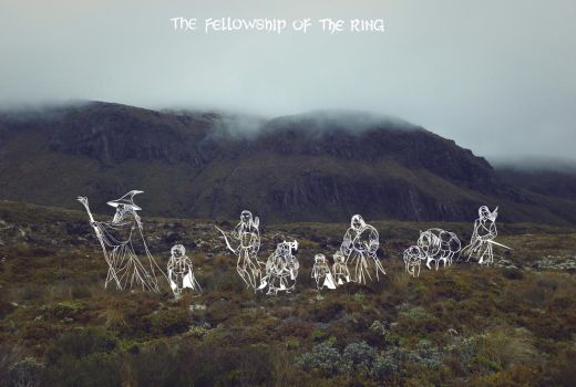 25-the-fellowship-of-the-ring by Wangyuxi