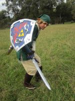 Link: Skyward Sword cosplay by Alyboxie