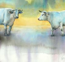 Cows from the Spreewald by mashami