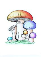 shroom: color practice by ChibiPandaMonster