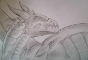 My first dragon by SettoriQ