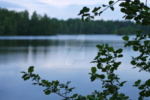 forest on the other side of the lake by xXxSheLovesHexXx