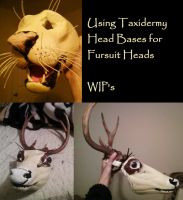 Taxidermy Mask Bases by FenrisMau