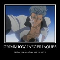 Grimmjow Jeagerjaques Poster by Club-Bleach