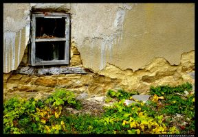 window to nature by Korni
