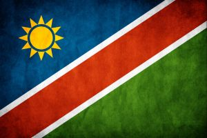 Namibia Grunge Flag by think0