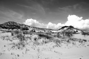 Grassy Dunes W Clouds by lamorth-the-seeker