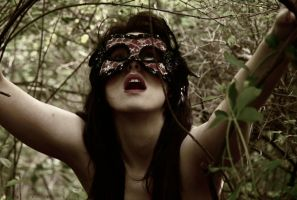 The Crossing by RaVeNuS9