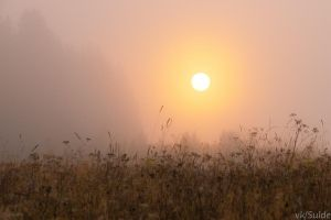 Foggy Sun by Sulde