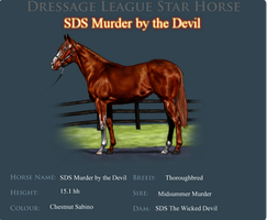 Murder's Dressage Star Ref. by SaintTheSinner