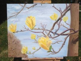 Yellow magnolia starts to blossom. by PortableParadise