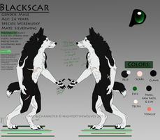 Blackscar Reference Sheet 2013 by lucidcoyote