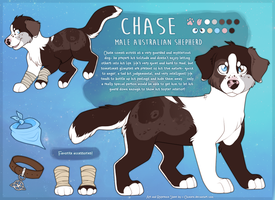 COM: Chase the aussie by c-Chimera
