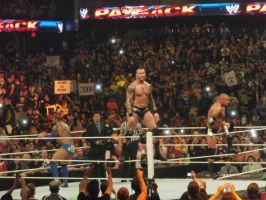 Randy Orton- Payback 2014 by rkogirl1