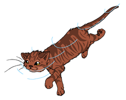 RiverClan - Sedgecreek by WildpathOfShadowClan