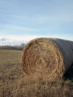 Hay Field Stock 2 by SimplyBackgrounds