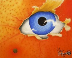 Eye Appeeling 2013 by nagohsirhc