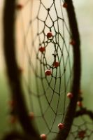 Dreamcatcher4 by TinaGrey