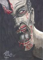 OUT FROM THE SHADOWS aceo version by twistedmentality
