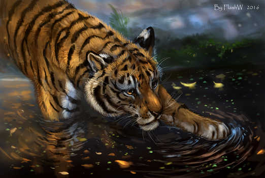 Tiger by FlashW