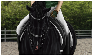 Lascivio's Training by Jullelin