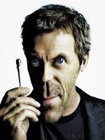 House md by domifoto
