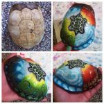 Custom Box Turtle Shell by KonKataCreations